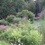 Jamie Purinton, Commercia Landscape Architecture, mountain top arboretum rain garden summer