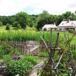 Jamie Purinton, Landscape Architecture, Residential, Hillsdale New York (6)