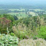 Jamie Purinton Landscape Architecture, taconic view