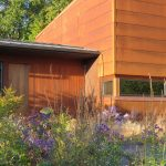 Jamie Purinton Residential Landscape Architecture, Millerton, New York, Meadow (6)